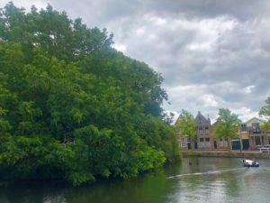 Hoornの町はずれの風景